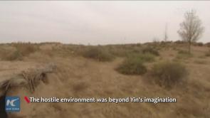 Chinese couple turn desert green